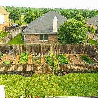 Urban vegetable garden -- 10 Steps to Start an Organic Garden | JenniferCooks.com